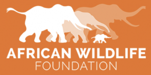 Learn More About the AWF Here